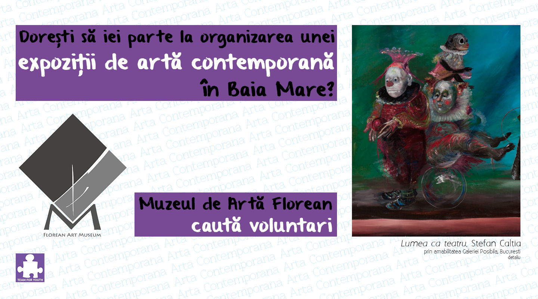 centru de voluntariat Baia Mare