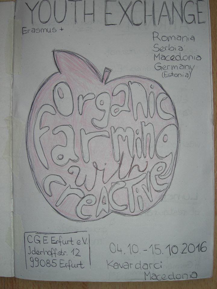 40-youth-exchange-organic-impact-5