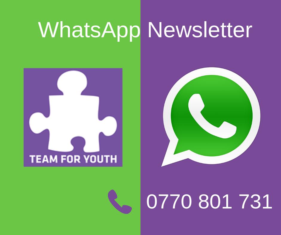 WhatsApp Newsletterqq